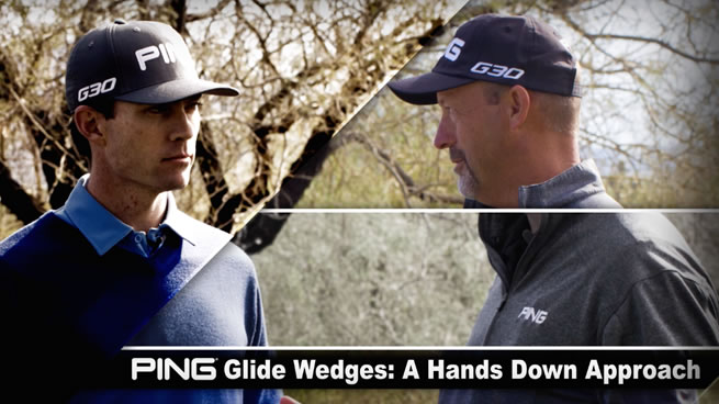GLIDE WEDGES OVERVIEW